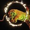 Цирки в Первомайском